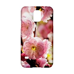 Blooming Almond At Sunset Samsung Galaxy S5 Hardshell Case  by FunnyCow