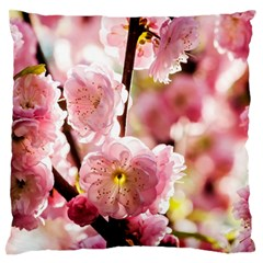 Blooming Almond At Sunset Standard Flano Cushion Case (two Sides) by FunnyCow