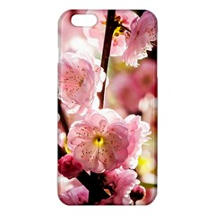Blooming Almond At Sunset Iphone 6 Plus/6s Plus Tpu Case by FunnyCow