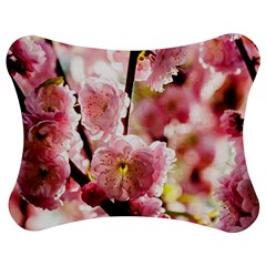 Blooming Almond At Sunset Jigsaw Puzzle Photo Stand (bow) by FunnyCow
