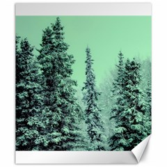 Winter Trees Canvas 20  X 24