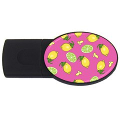 Lemons And Limes Pink Usb Flash Drive Oval (4 Gb) by snowwhitegirl
