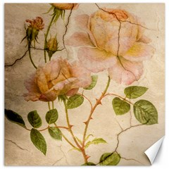 Rose Flower 2507641 1920 Canvas 12  X 12  by vintage2030