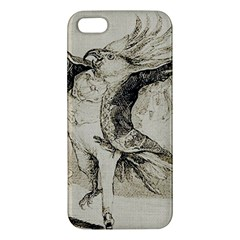 Bird 1515866 1280 Apple Iphone 5 Premium Hardshell Case by vintage2030