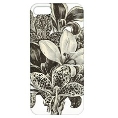 Flowers 1776483 1920 Apple Iphone 5 Hardshell Case With Stand by vintage2030