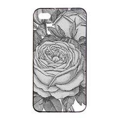 Flowers 1776610 1920 Apple Iphone 4/4s Seamless Case (black) by vintage2030