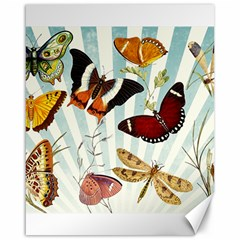 Butterfly 1064147 960 720 Canvas 16  X 20  by vintage2030
