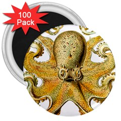 Gold Octopus 3  Magnets (100 Pack)