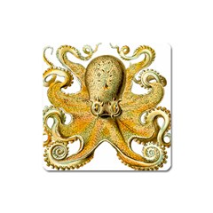 Gold Octopus Square Magnet