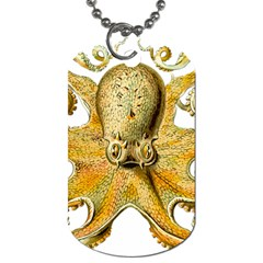 Gold Octopus Dog Tag (one Side)