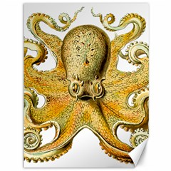 Gold Octopus Canvas 36  X 48
