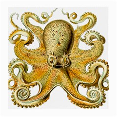 Gold Octopus Medium Glasses Cloth