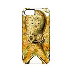 Gold Octopus Apple Iphone 5 Classic Hardshell Case (pc+silicone)