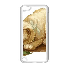 Cat 1827211 1920 Apple Ipod Touch 5 Case (white) by vintage2030