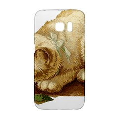 Cat 1827211 1920 Samsung Galaxy S6 Edge Hardshell Case