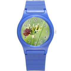 One More Bottle Does Not Hurt Round Plastic Sport Watch (s) by FunnyCow