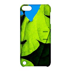 Window Of Opportunity Apple Ipod Touch 5 Hardshell Case With Stand by FunnyCow