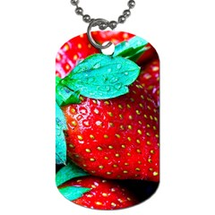 Red Strawberries Dog Tag (two Sides) by FunnyCow