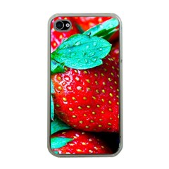 Red Strawberries Apple Iphone 4 Case (clear) by FunnyCow