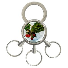 Red Raspberries In A Teacup 3 Ring Key Chains by FunnyCow