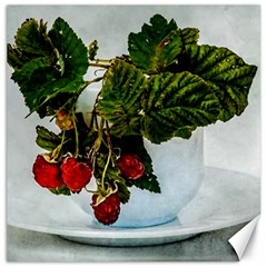 Red Raspberries In A Teacup Canvas 12  X 12  by FunnyCow