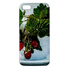 Red Raspberries In A Teacup Apple Iphone 5 Premium Hardshell Case by FunnyCow