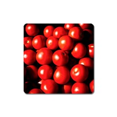 Pile Of Red Tomatoes Square Magnet by FunnyCow