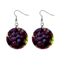 Red And Green Grapes Mini Button Earrings by FunnyCow
