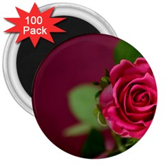 Rose 693152 1920 3  Magnets (100 Pack) by vintage2030