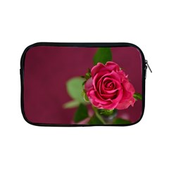 Rose 693152 1920 Apple Ipad Mini Zipper Cases by vintage2030