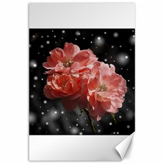 Rose 572757 1920 Canvas 24  X 36  by vintage2030