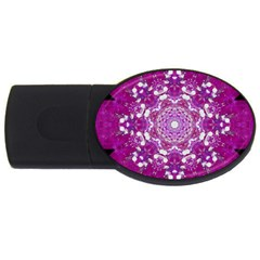 Wonderful Star Flower Painted On Canvas Usb Flash Drive Oval (2 Gb) by pepitasart