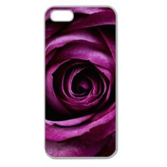 Plant Rose Flower Petals Nature Apple Seamless Iphone 5 Case (clear)