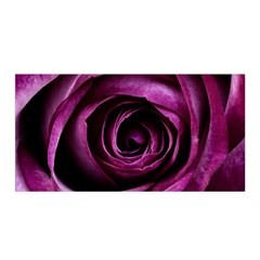 Plant Rose Flower Petals Nature Satin Wrap