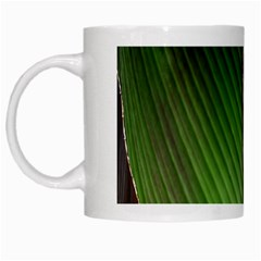 Leaf Banana Leaf Greenish Lines White Mugs