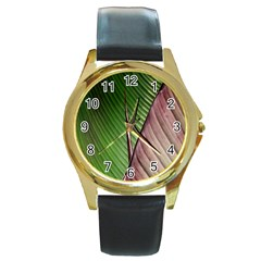Leaf Banana Leaf Greenish Lines Round Gold Metal Watch by Sapixe