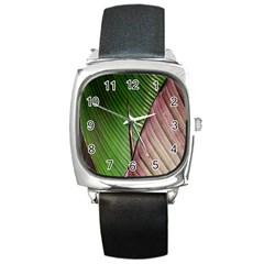 Leaf Banana Leaf Greenish Lines Square Metal Watch by Sapixe