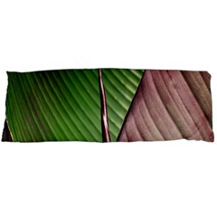 Leaf Banana Leaf Greenish Lines Body Pillow Case Dakimakura (two Sides)