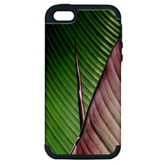 Leaf Banana Leaf Greenish Lines Apple Iphone 5 Hardshell Case (pc+silicone)