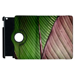Leaf Banana Leaf Greenish Lines Apple Ipad 2 Flip 360 Case by Sapixe