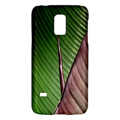 Leaf Banana Leaf Greenish Lines Samsung Galaxy S5 Mini Hardshell Case
