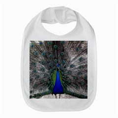 Peacock Bird Animals Pen Plumage Bib