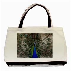 Peacock Bird Animals Pen Plumage Basic Tote Bag (two Sides)