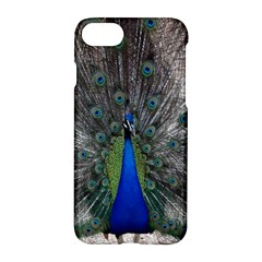 Peacock Bird Animals Pen Plumage Apple Iphone 8 Hardshell Case by Sapixe