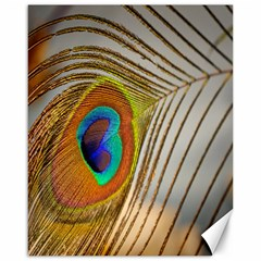 Peacock Feather Feather Bird Canvas 16  X 20  by Sapixe