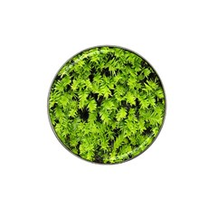Green Hedge Texture Yew Plant Bush Leaf Hat Clip Ball Marker (4 Pack)
