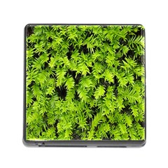 Green Hedge Texture Yew Plant Bush Leaf Memory Card Reader (square 5 Slot) by Sapixe
