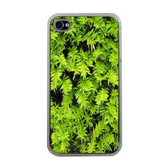 Green Hedge Texture Yew Plant Bush Leaf Apple Iphone 4 Case (clear)