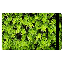 Green Hedge Texture Yew Plant Bush Leaf Ipad Mini 4
