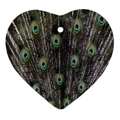 Background Peacock Feathers Ornament (heart)